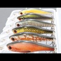 WLure 6 Fishing Lures Per Pack 7 2g 8 5cm Lifelike Paint Slow Floating Medium Diver