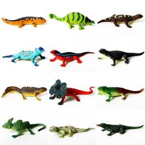 Image 3 - 12 adet eğitim gerçekçi sürüngen aksiyon figürleri ile set dinozor kertenkele timsah kaplumbağa mükemmel parti Model oyuncaklar