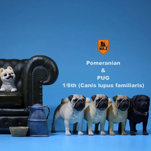 M.Z Simulation Animal Series 1/6th Pets Resin (Canis lupus familiaris) Pug Bulldog Statue Accessories Animal Figure for 12