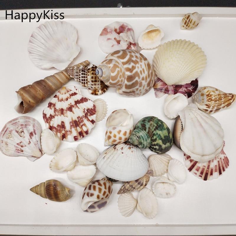 100g/Bag Mediterranean Style DIY Fashion Beach Mixed Seashells Mix Sea Shells Natural Crafts For Aquarium Fish Tank Decor