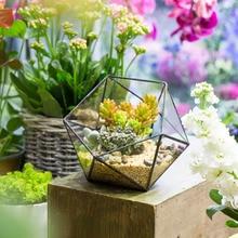 Desktop Geometric Glass Bowl Shape Plants Terrarium Bonsai Flower Pot Vase Garden Succulents Planter Decorative Flowerpot