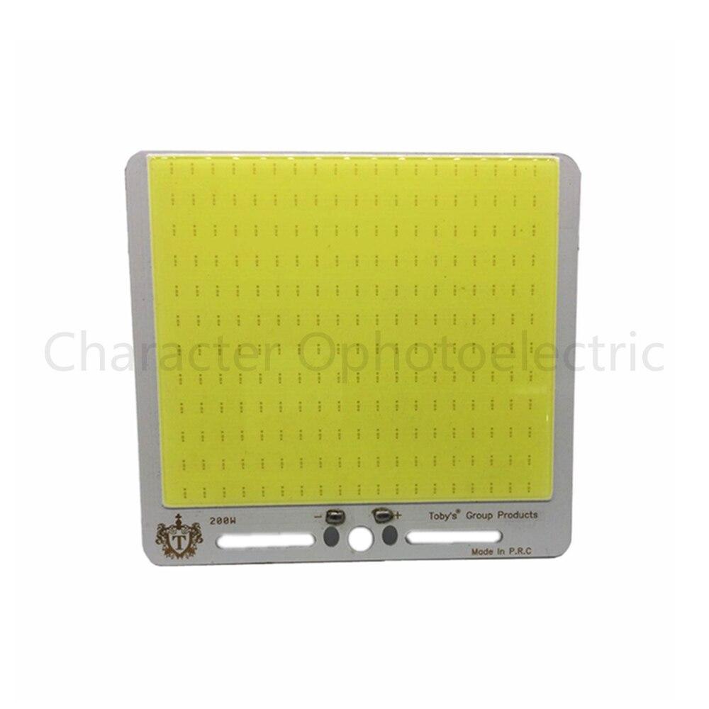 Super Lumineux 12 V 200 W De Pêche Tige COB LED Source de Lumière Camping En Plein Air Lampe De Voiture Lumières DC12-14V Pur Froid blanc 6500 K