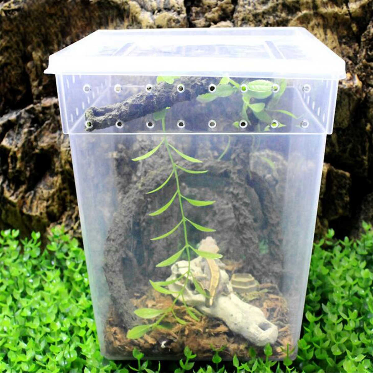Transparan Peliharaan Reptil Tangki Makan Terrariums Serangga Kadal Ular Laba-laba Breeding Kotak Kandang Rumah Reptil Aksesoris