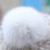 Nuevo otoño invierno de la piel verdadera piel de visón kintted lana gorra de piel protector auditivo sombrero de zorro balón sable natural genuine mink fur sombreros