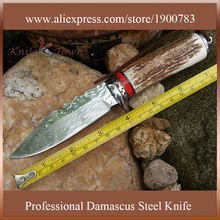 DT075 professional fixed damascus steel Blade hunting knives tactical Camping knife Outdoor Survival Knife Utility cuchillos