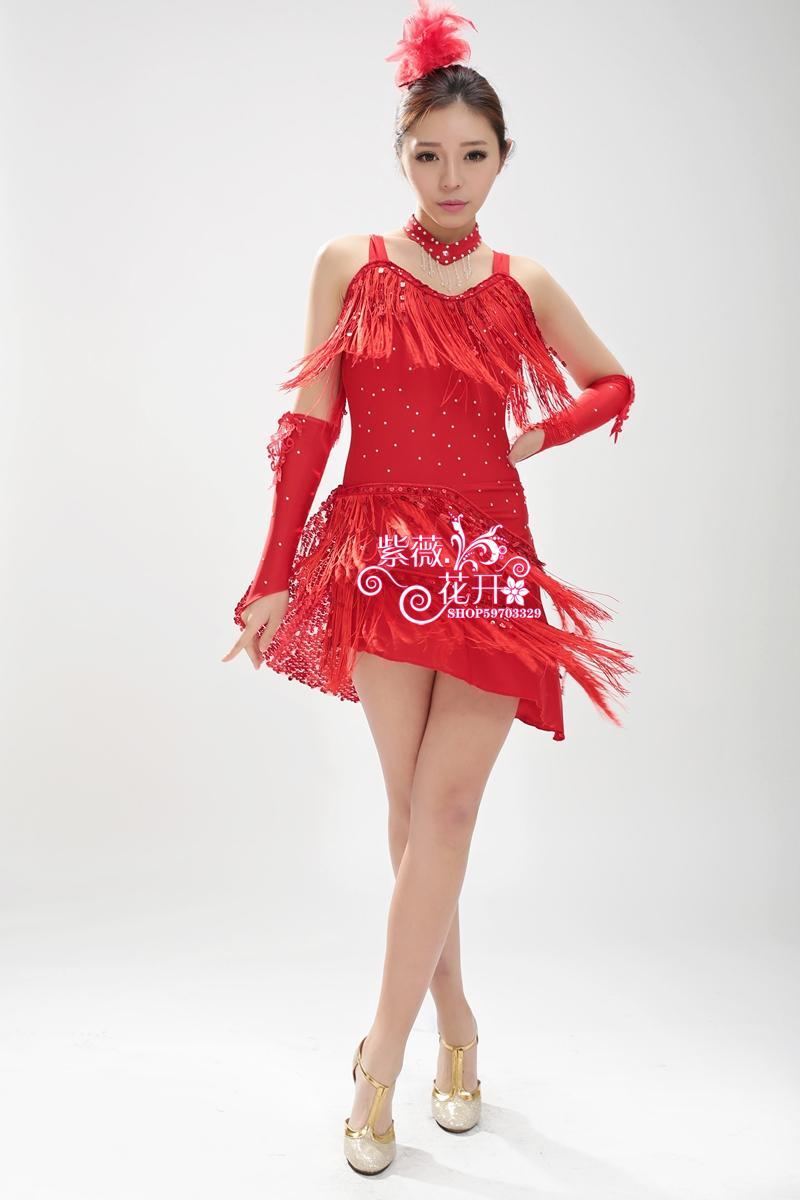 The new women/Children Latin Dance Dress For Tassel style Girls/Lady Cha Cha/Rumba/Samba/Tango/Ballroom square dance Skirt