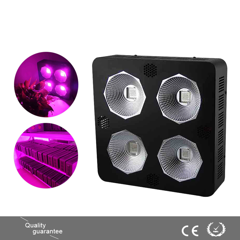 600W COB LED Grow Light Module Design Full Specturm Red,Blue,White,Yellow,IR and UV for Vegetable Indoor Plant Growing ...