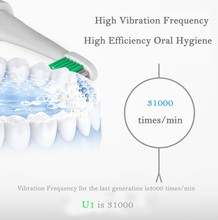 Ultrasonic Sonic Electric Toothbrush with USB Rechargeable Battery
