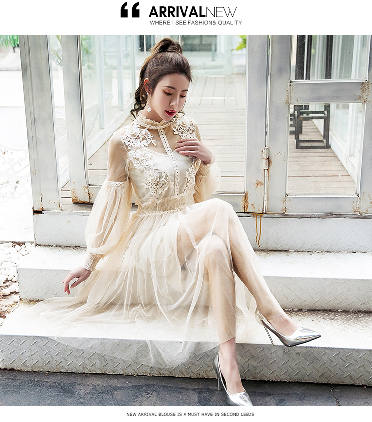 19 New Women Fashion Dress Stand Collar Lantern Sleeve Mesh Dress See-through Lace Embroidery Fairy Dress Femme Vestidos Robe 6