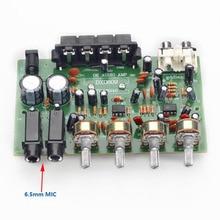Con Dos 6.5mm MIC Digital Kara OK Amplificador TDA8946 Tablero DC 12 ~ 15 V 60 w de Potencia de Salida amplificadores
