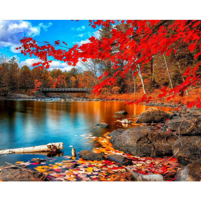 1Set Beautiful Autumn Forest Landscape DIY Painting By Numbers Picture By Numbers Modern Wall Art Canvas Painting Unque Gift