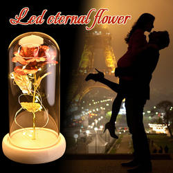 WR очарование Золотая Роза фольга покрытием золото свадебные украшения в виде роз Золотая роза Декор цветок в стекло со светом подарок на