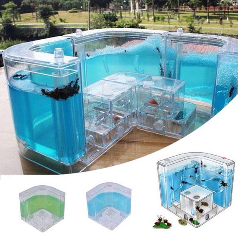 Acrylic Ants Farm Ants House Castle Colorful Insects Terrarium Ant Cage Insects Box Nursery Ecological Kid Educational Model Toy14