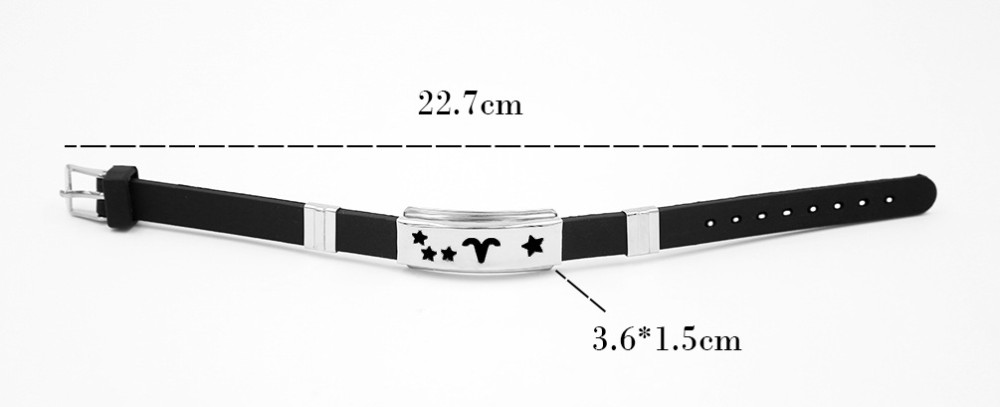 12 Zodiac Signs bracelet 4
