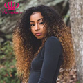 Fashion Afro Kinky Curly Lace Wigs Two Tone Ombre Brown Synthetic Lace Front Wig Heat Resistant Gluless Curly Wigs for Women