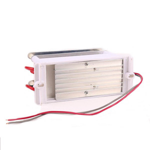 Image 5 - 220V/110V 10g Portable Ceramic Ozone Generator Double Integrated Long Life Ceramic Plate ozonator air Water Cleaner Air Purifier