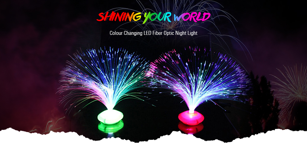 Color Changing LED Fiber Optic Night Light Home Decoration Light