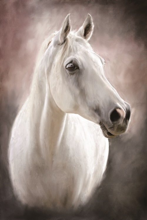 Modern Oil Painting Art Black White Horse Painting Hd