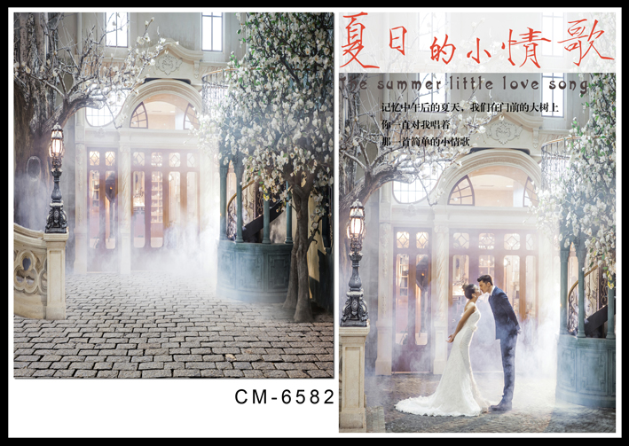 Mist World Background Photography Bright Windows Green Tree Photo Backdrops Brick Street fotografia Wedding Studio Background yongnuo yn128 camera photo studio phone video 128 led ring light 3200k 5500k photography dimmable ring lamp for iphone 7 7 plus