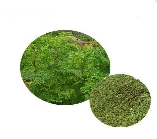 1kg Natural Organic Moringa leaf powder green powder 80 mesh Free shipping