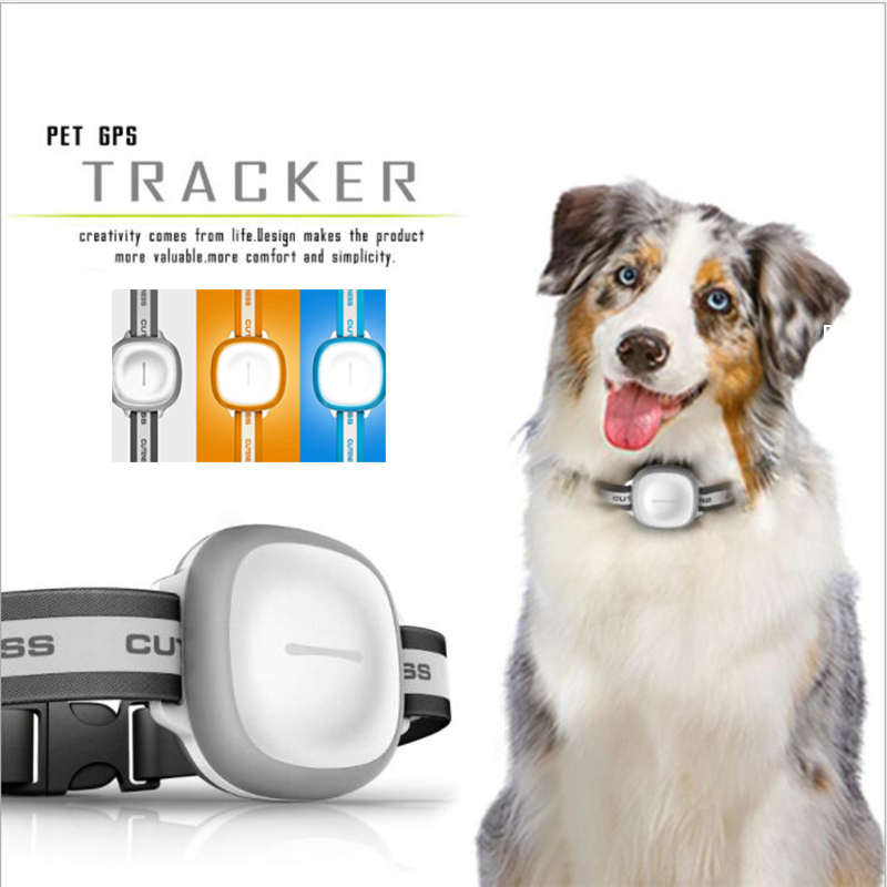 Pet Cat Dog Smart GPS Locator Device Tracker Waterproof Shockproof Tracking Locator Gray Orange Blue Tracking with Free PlatformPet Cat Dog Smart GPS Locator Device Tracker Waterproof Shockproof Tracking Locator Gray Orange Blue Tracking with Free Platform
