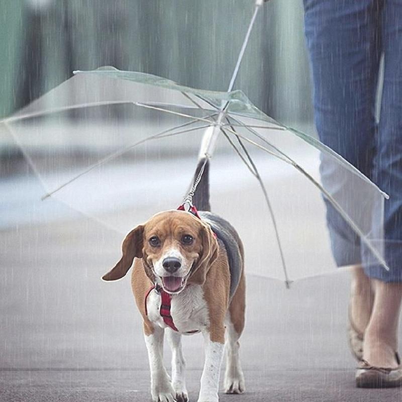 Pet Dog Umbrella Useful Transparent PE Small Dog Cat Umbrella Rain Gear with Dog Leads Keeps Pet Dry Comfortable in Rain Snowing