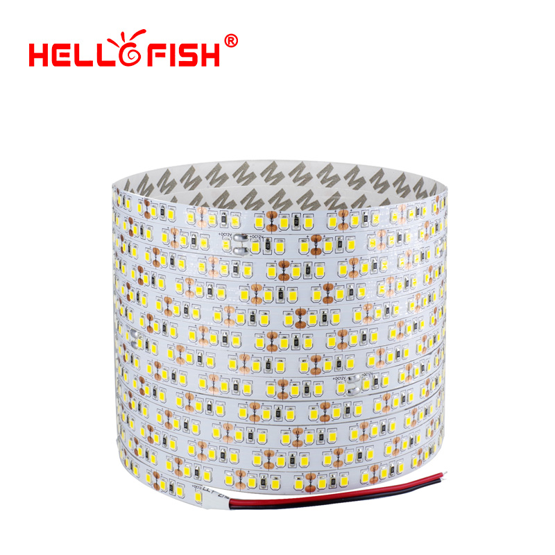 Hello Fish 5M 2835 600 SMD LED Strip 12V Flexibel120 LED M LED Tape Hvit / Varm Hvit / Rød / Grønn / Blå Med Sporingsnummer