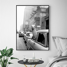 Llama in a taxi on Times Square Canvas Prints Modern Painting Posters Wall Art Pictures For Living Room Decoration No Frame doin time in times square