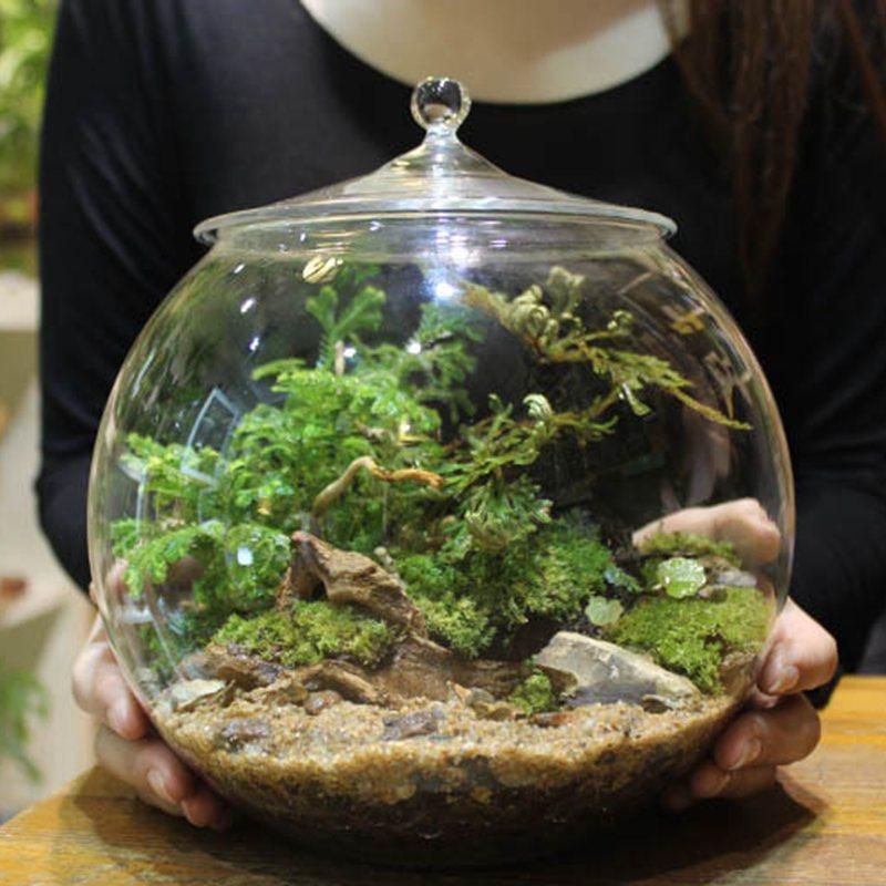 online get cheap glass sphere vase. Black Bedroom Furniture Sets. Home Design Ideas