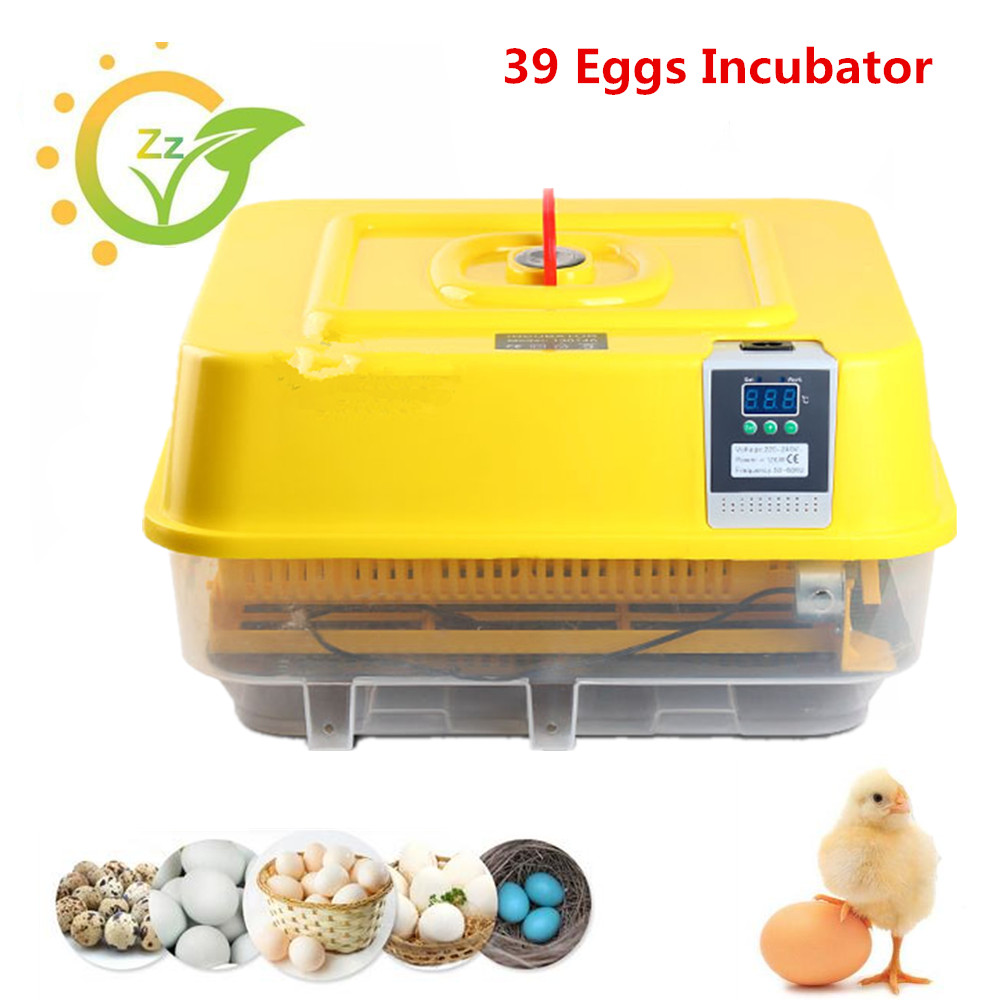 New 39 Eggs Full-Automatic Incubator Small Eggs Turning Tray Chicken Hatching Machine Poultry Hatchers new 39 eggs full automatic incubator