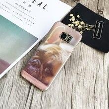 French Bulldog Puppy Phone Case