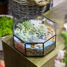 Free Shipping Modern Glass Geometric Terrarium Octagon Tabletop Succulent Fern Moss Plant Terrarium Box Bonsai Flower Pot
