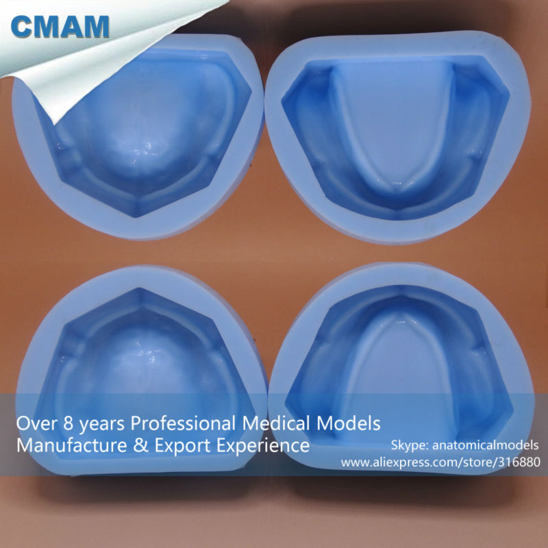 12598 CMAM-DENTAL17-1 Dental Plaster Model Mold of Edentulous Jaw Silicon Complete Cavity Block, Edentulous Model household product plastic dustbin mold makers