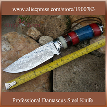 Bayonet knife hunting knife fixed blade knife stainless steel knife damascus steel blade edc tool DT125
