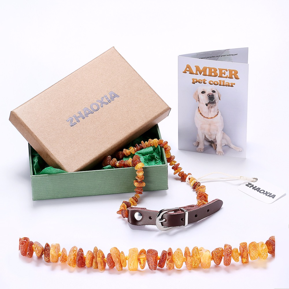 Amber Flea e Ballkanit të Raw dhe Rrokullisje jakë me rrip lëkure të rregullueshëm për qen dhe mace - Testuar laboratorin