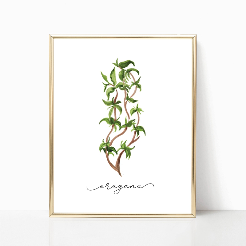 Herb Canvas Art Painting Home Decoration