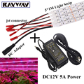 Hot Selling 5*1M SMD 5050 LED Grow Light Strip for Plants Flower Vegetable Growth Lamp + DC Connector + 12V 5A Power Adapter