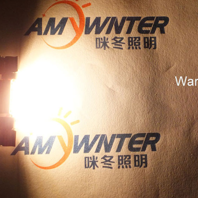 AMYWNTER c5w πλήρωμα κοπής φώτα - Φώτα αυτοκινήτων - Φωτογραφία 5