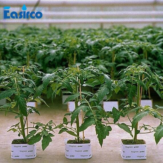 Ic Free Shipping >> (10pcs/pack)One hole Grodan 4'' rockwool hydroponic grow ...