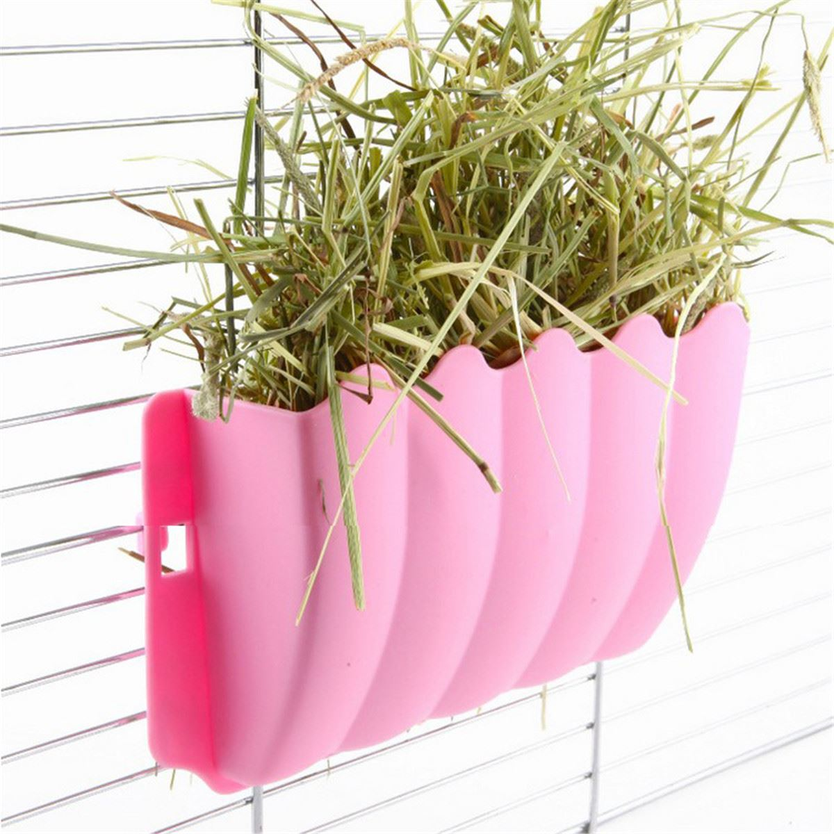grass feeder nesting pet item rabbit bowl watering in plastic feeding garden from hanging pig supplies home rack small frame pigs hay holder cat guinea