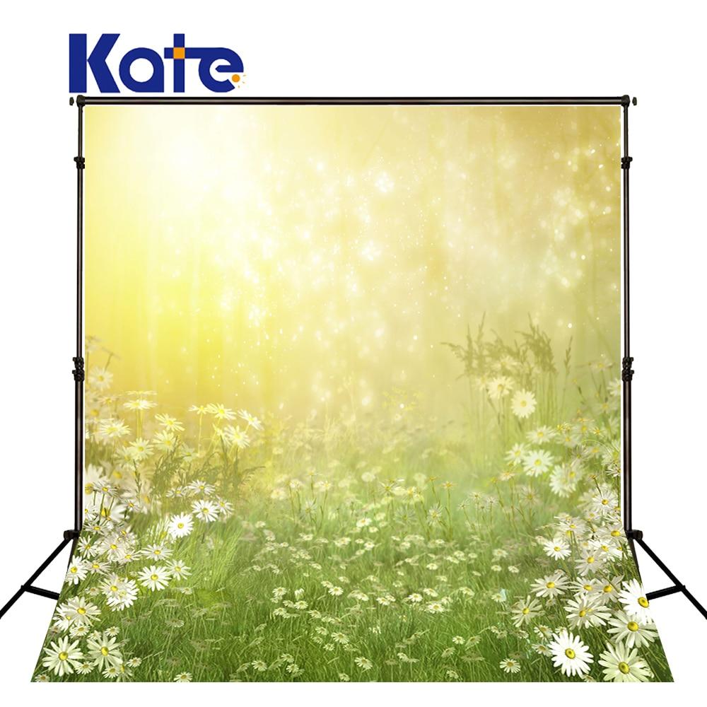 Décors de photographie arrière-plan photographique fleurs plantes de prairie