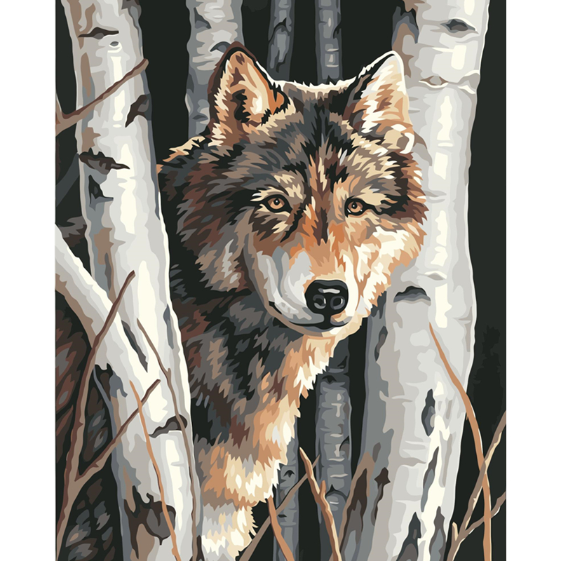 Collection  Painting By Numbers DIY Dropshipping 40x50 50x65cm White birch Wolf forest Animal Canvas Wedding De
