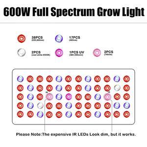 Image 4 - Phlizon 600 w lampe horticole led élèvent la lumière Plein Spectre Rouge Bleu UV intérieur fleur Led Lampes de Plus en plus Pour grandir tente boîte système de culture hydroponique