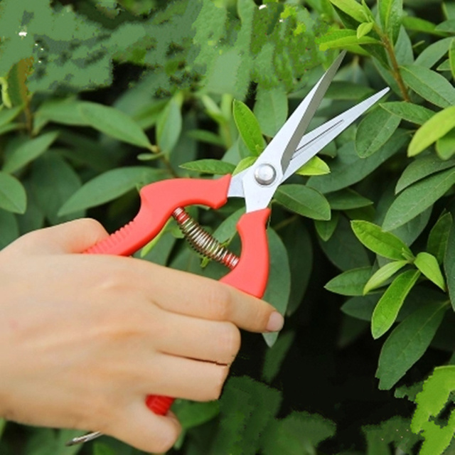 Hot Selling Pruning scissors for grafting trees Pruning Shears Bonsai Pruners  Flower Cutter garden Tool