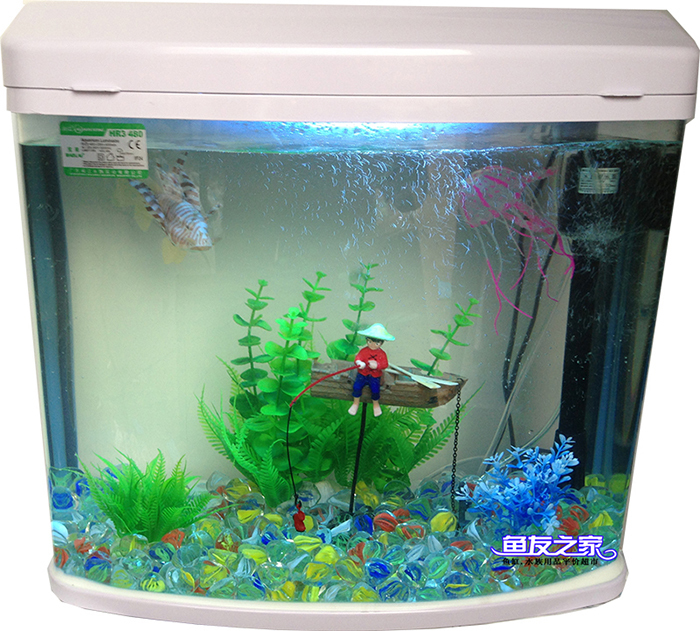Small glass fish tanks for Small tropical fish tank