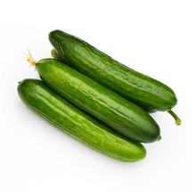 Sub – Season Fruit White Cucumber Species Home Plant Vegetables Fruit Potted Plant Seeds 20 Seeds