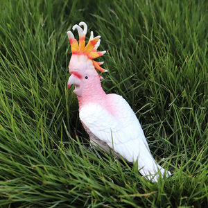 Image 4 - Oenux現実的な野生動物アクションフィギュア動物園虎馬オウム鳥固体pvcモデル置物かわいいおもちゃ子供のためギフト
