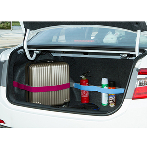 Image 5 - Promotion Car Trunk Organizer Elastic Car styling Color Strap Fixed Sundry Stowing Tidying Auto Interior Accessories Dewtreetali