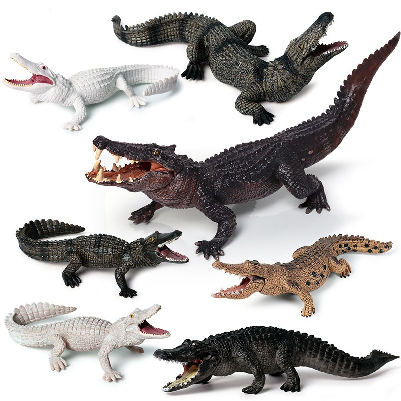 Amphibian Crocodile Model for Children Solid Simulation Wild Boar Crocodile Nile Crocodile Alligator Wildlife Toys(China)
