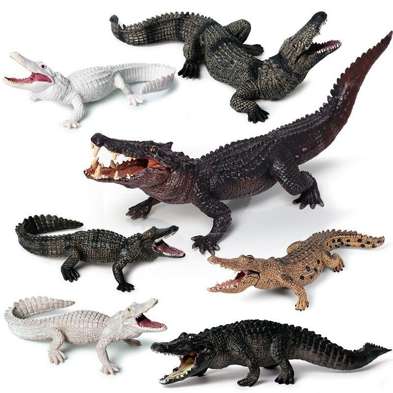 Amphibian Crocodile Model for Children Solid Simulation Wild Boar Nile Alligator Wildlife Toys